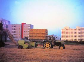 Feld-und-Hochhaus-mit-Traktor